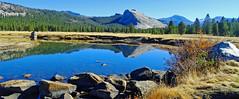 Tuolumne River, Yosemite High Country 2018