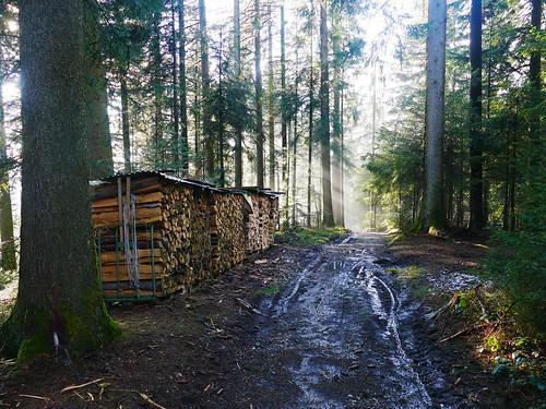 Oberthal - Blasefluh (1118m)