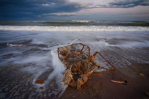 il mare restituisce una nassa