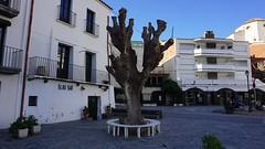 Bench in Cadaqués (12)
