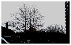 Wel,  't was grijs, met af en toe regen...