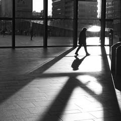 shadowsplay