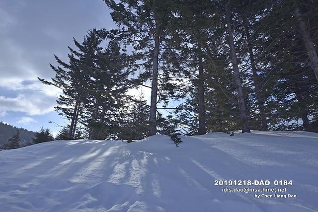 Photo:20191218-DAO_0184 日本,北海道的冬天,滑雪場,森林 By 盈盈設計影像網 0932046950