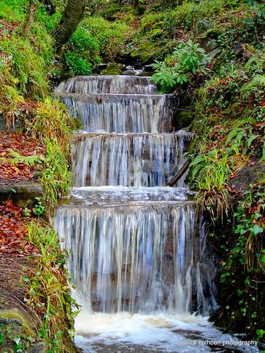 Swans park waterfall