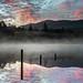 Muckross Morning ,Charlie O_Donovan,16pts