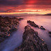 Inch Sunset ,Paul Flynn,14pts