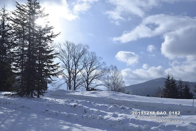 Photo:20191218-DAO_0182 日本,北海道的冬天,滑雪場,森林 By 盈盈設計影像網 0932046950