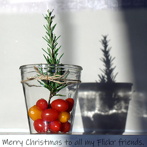 I've picked you a Christmas tree