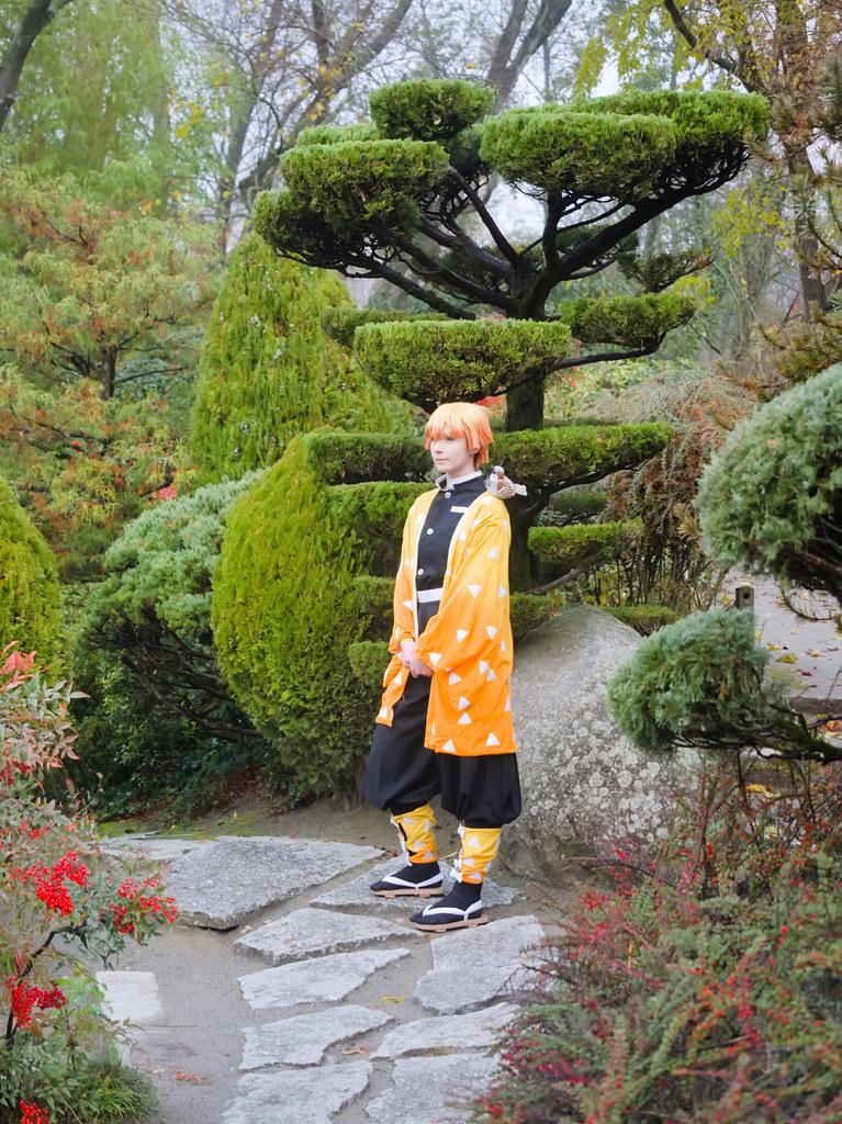 related image - Shooting Demon Slayer Kimetsu no yaiba - Zenitsu Agatsuma - Jardin Japonais - Toulouse -2019-12-01- P1955765