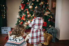 Little friend decorating Christmas tree together