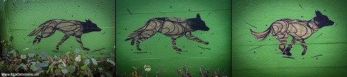 The running canine project by Dzia
