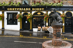 Edinburgh: Greyfriars Bobby
