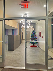 Lonely Christmas Tree - Brooklyn, NYC