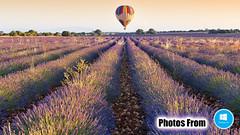 Photos From Windows 10 Launch Screen 01 - Hot Air Balloon