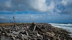 Bonaire Coast