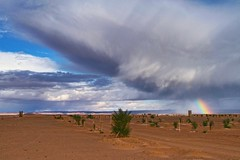 Erg Chebbi, Sahara Desert, Morocco, 摩洛哥 - Explore