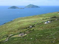 Deenish and Scariff Islands