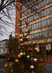 City Christmas