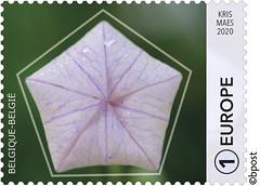 03 GÉOMÉTRIE - PENTAGONE timbre c©