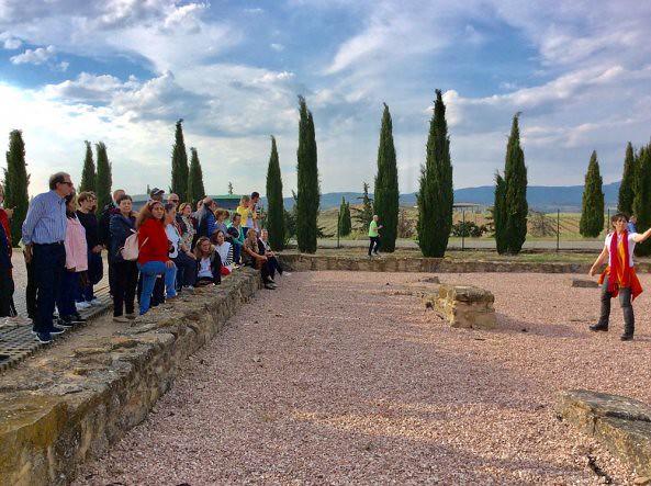 Excursión a Eunate y Villa romana de Las Musas