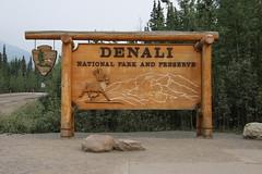 2019, Kanada/USA, 27.Tag, Denali Nationalpark