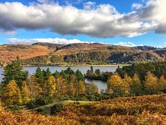 Cat Bell, Derwent Water, Lake District, Cumbria
