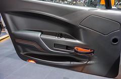 Portière Vantage GT3 Special Edition