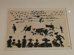 Picasso illustrateur : Toros