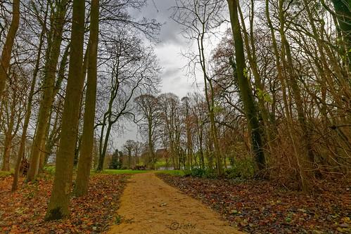 2019-12 Pepigen parc Ter Rijst (01)