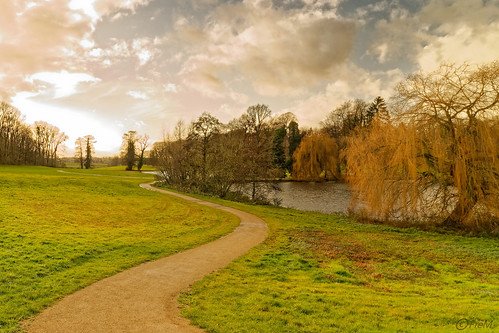 2019-12 Pepigen parc Ter Rijst (05)