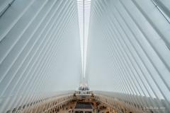 New-York: L'Oculus