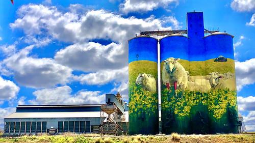 Merriwa Grain Silo, Merriwa, Upper Hunter Valley, NSW