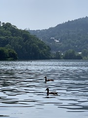 Lac d'Aydat, France - Photo of Saint-Amant-Tallende