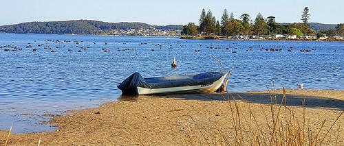 This beautiful morning on Lake Macquarie