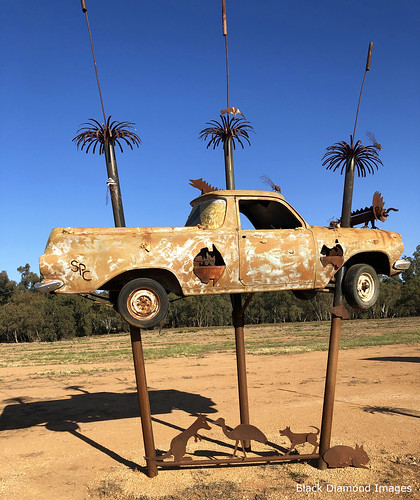 Outback Utes - Utes in the Paddock, The Gipps Way, Condoblin, Central West, NSW