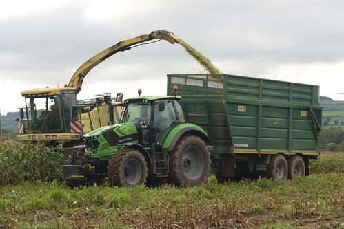 Krone Big X 630 filling a Smyth Trailer Field Master Super Cube Trailer drawn by a Deutz Fahr Agrotron 6205 Tractor