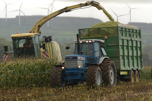 Krone Big X 630 filling a Broughan Engineering Mega HiSpeed Trailer drawn by a Ford TW25 Tractor
