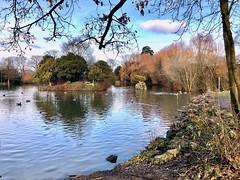 Crawley, Sussex