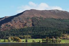 Bassenthwaite Lake National Nature Reserve, Derwent water, Cumbria, Lake District