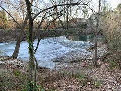 Balade d'hiver le long des berges du fleuve côtier le Lez. Montpellier Nord - Clapiers - Montferrier sur Lez.