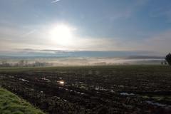 Suisse Normande dans le brouillard