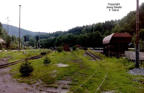 D-09439 Wilischthal Deutsche Reichsbahn Schmalspurbahn Gleisanlagen im August 1993