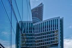 The Hague blues