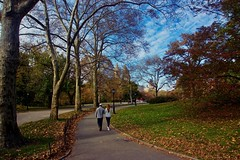 A walk in the park - New York City