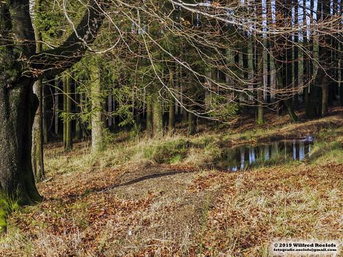 Ardennen België