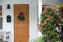 palmetto wreath