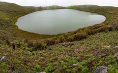 Laguna el Junco