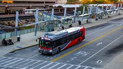 WMATA Metrobus 2019 New Flyer Xcelsior XD40 #4470