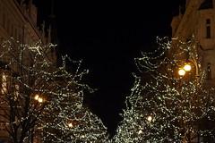 29.12.19 Prague 169.jpg