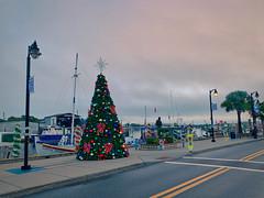 Christmas on the Sponge Docks